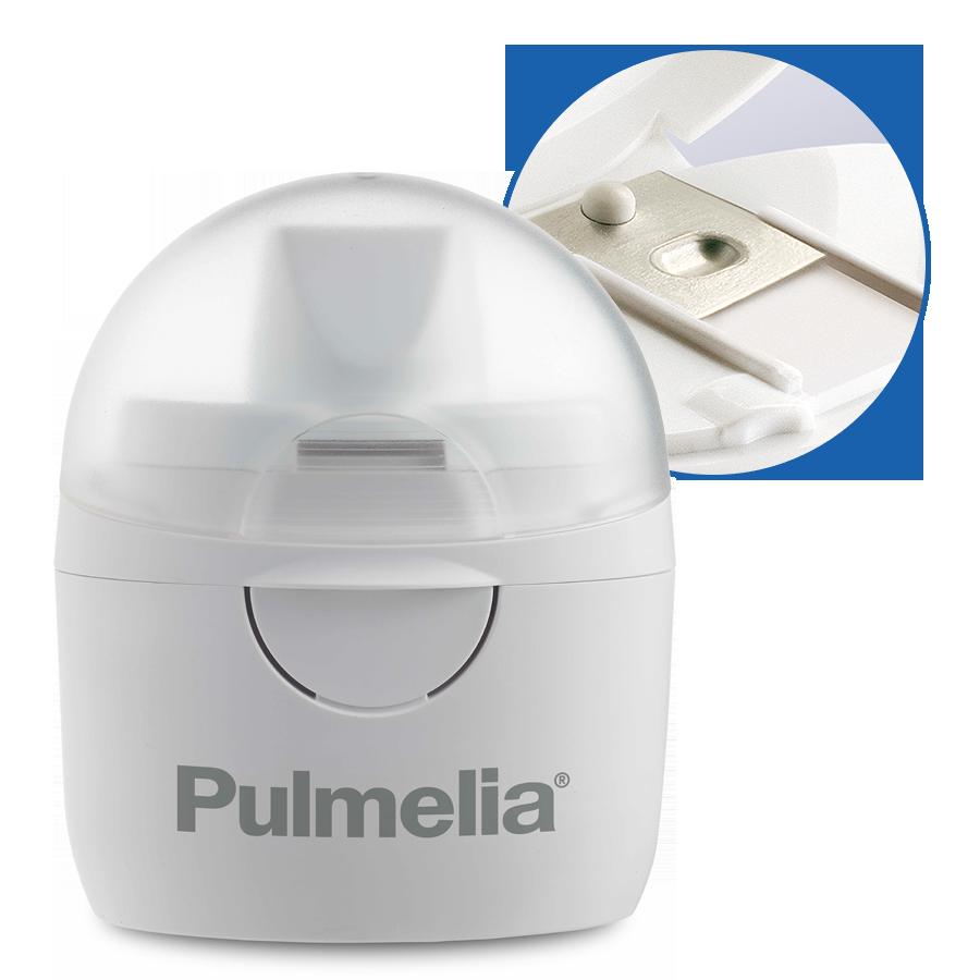 Pulmelia